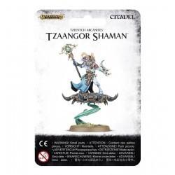 Tzeentch Arcanites Shaman
