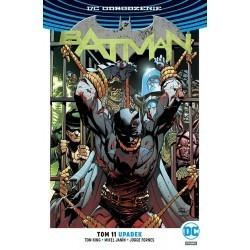 Batman - Upadek (tom 11)